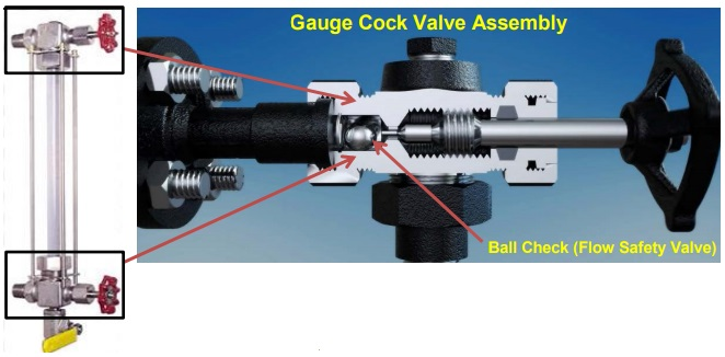 BSEE check valves alert